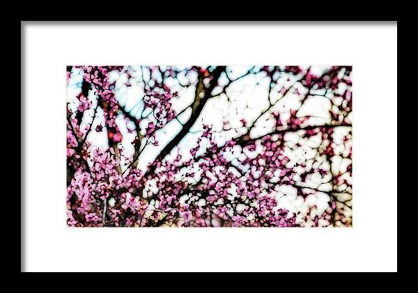 Framed Print featuring the photograph The Last Of Their Kind by Nancy Marie Ricketts