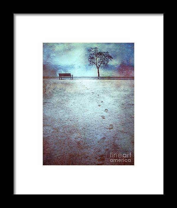 Bench Framed Print featuring the photograph The Last Snowfall by Tara Turner