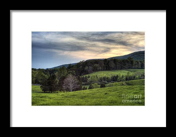 Landscape Framed Print featuring the photograph The Late Bloomer by Pete Hellmann
