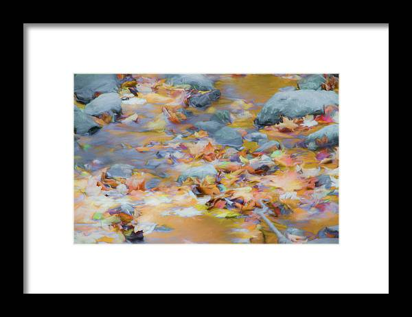 Abstracts Framed Print featuring the photograph The Lightness of Autumn by Marilyn Cornwell