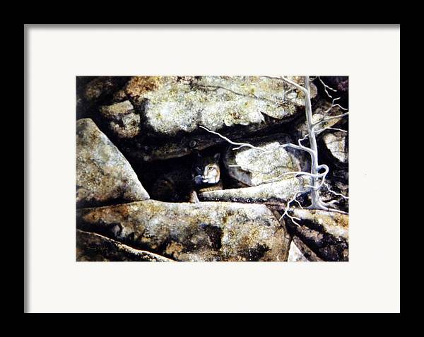 Wildlife Framed Print featuring the painting The Lookout Lynx by Frank Wilson