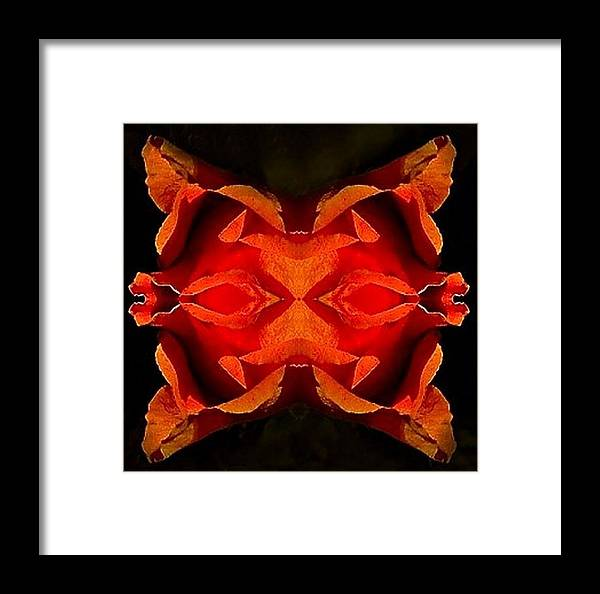 Mask Framed Print featuring the digital art The Mask by Cathy Blake