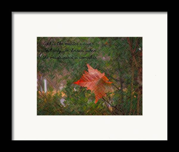 Leaf Framed Print featuring the photograph The Master Weaver by Judy Waller