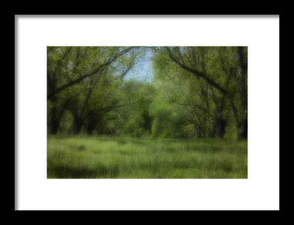 Landscape Framed Print featuring the photograph The Meadow by Ayesha Lakes
