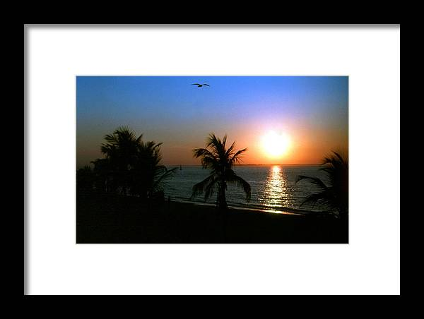 Sunset Framed Print featuring the photograph The Obvious Direction 2 by Scott Bricker