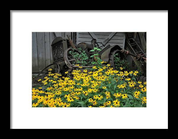 Floral Framed Print featuring the photograph The Old And New by Jan Amiss Photography