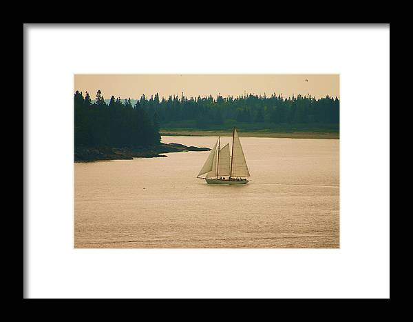 Sailing Framed Print featuring the photograph The Old Schooner by Dennis Curry