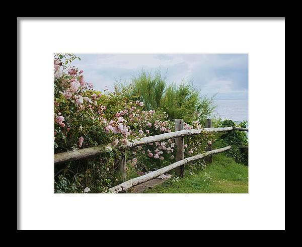Fence Framed Print featuring the photograph The Other Side Of The Fence by Angi Parks