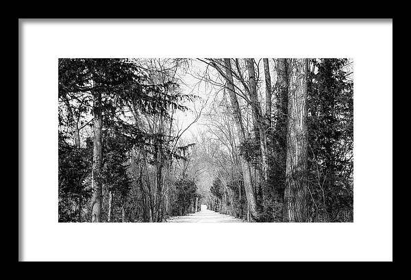 Winter Framed Print featuring the photograph The Path by Kevin Riggins Photography