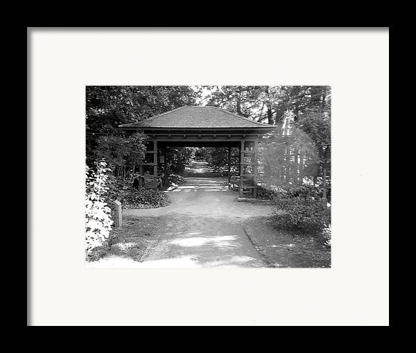 Path Framed Print featuring the photograph The Path by Scarlett Royal