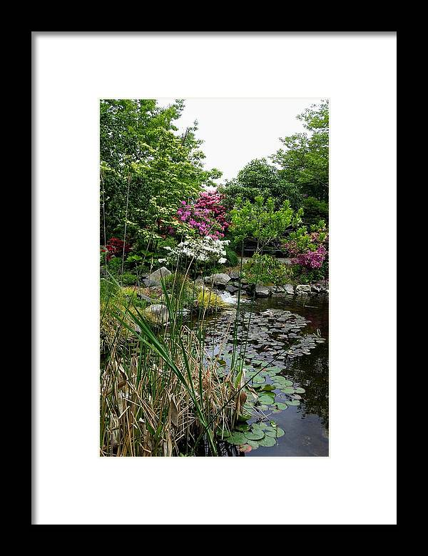 Botanical Flower's Nature Framed Print featuring the photograph The peaceful place 12 by Valerie Josi