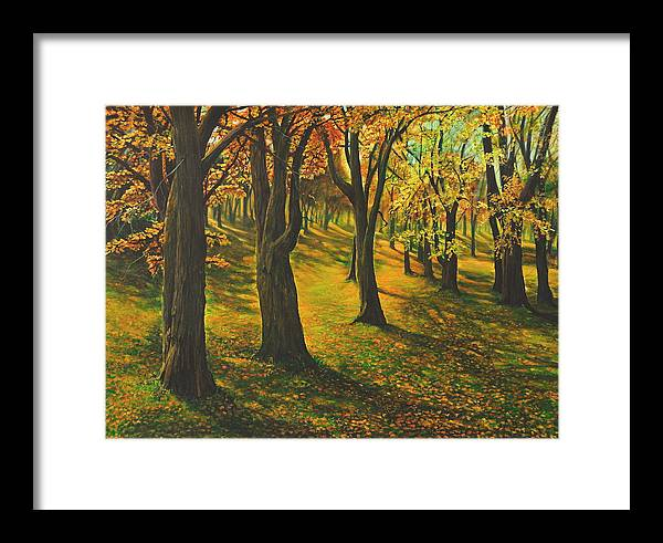 Landscape Framed Print featuring the painting The Plains Of Abraham by Craig shanti Mackinnon