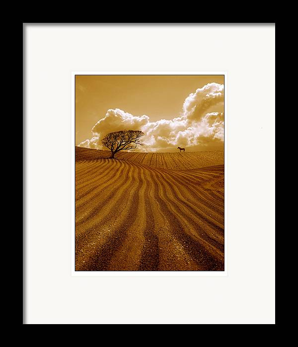 Field Framed Print featuring the photograph The Ploughed Field by Mal Bray