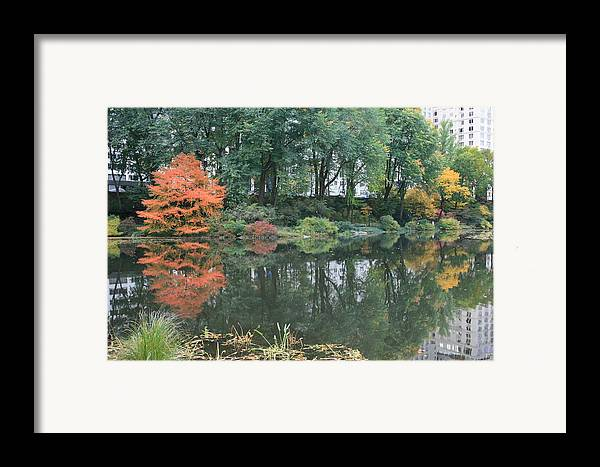 Central Park Framed Print featuring the photograph The Pond In Central Park In Fall by Christopher Kirby