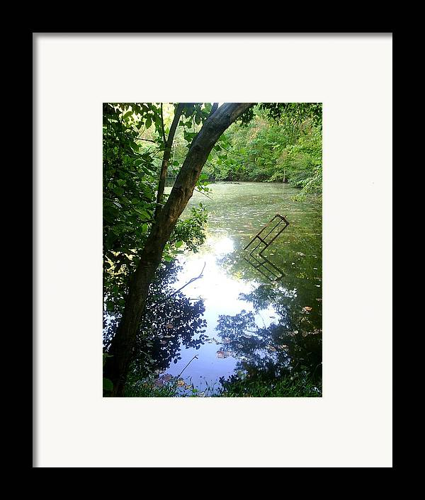 Pond Framed Print featuring the photograph The Pond by Scarlett Royal