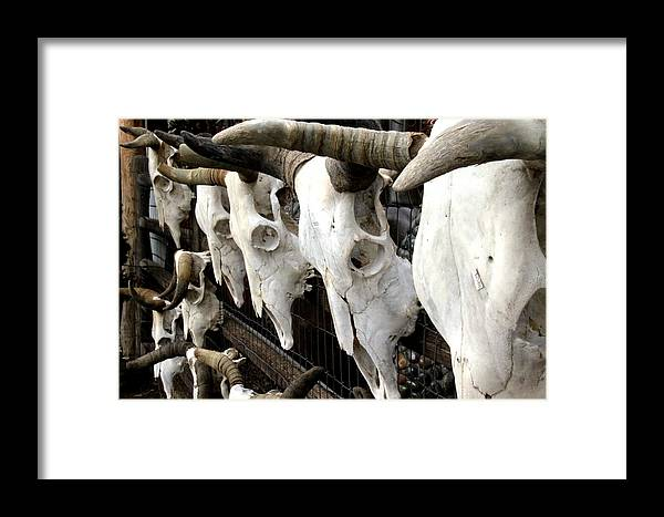 Skull Framed Print featuring the photograph The Price On Their Heads by Chris Griffith
