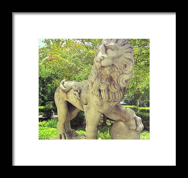 Lion Framed Print featuring the photograph The Proud Lion by JAMART Photography