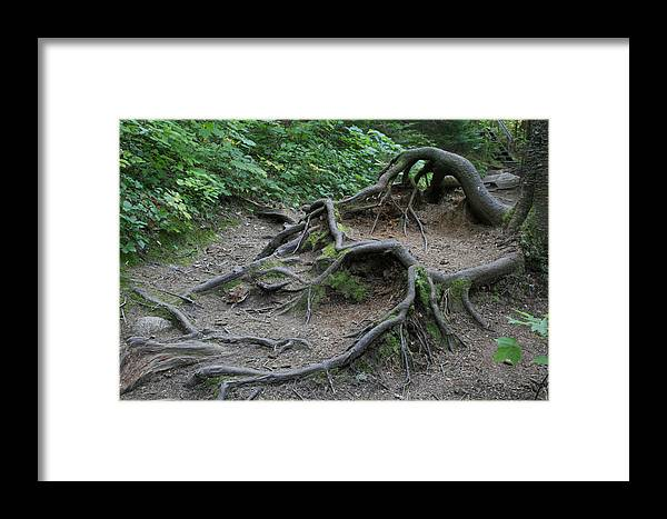 Landscape Framed Print featuring the photograph The Reach by Alan Rutherford
