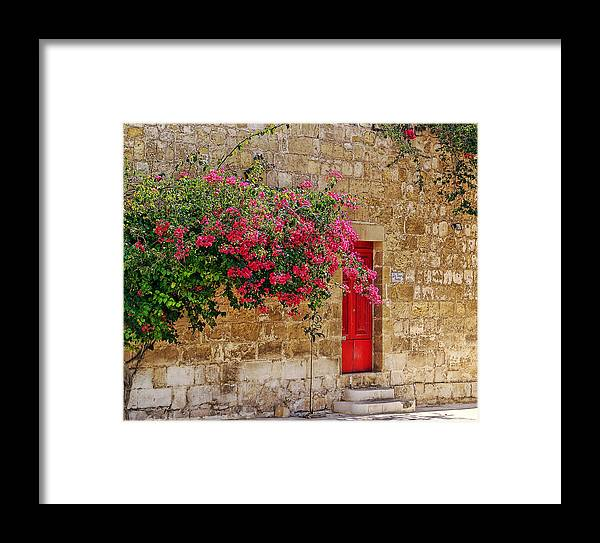 Flowers Framed Print featuring the photograph The Red Door by Anselmo Albert Torres