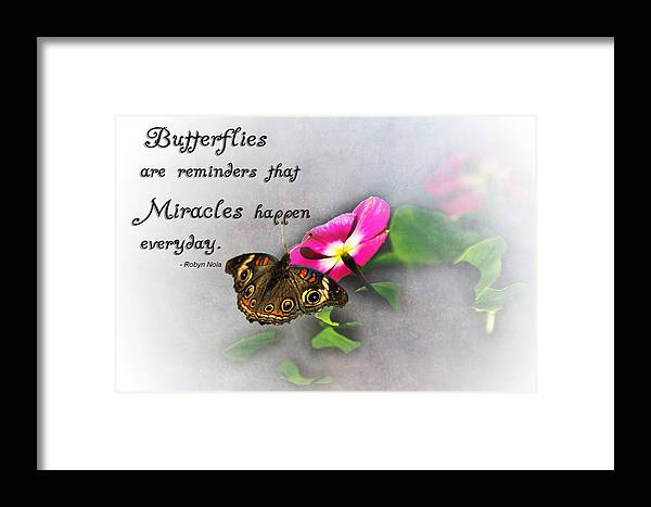 Butterfly Framed Print featuring the photograph The Reminder by Annette Persinger