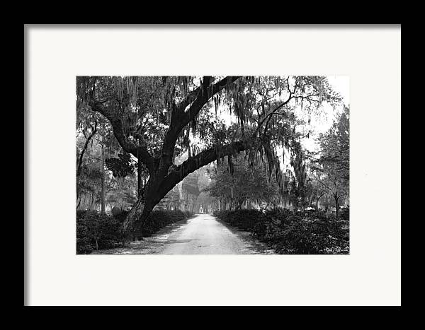 Bonaventure Cemetery Framed Print featuring the photograph The Road Home by Rick Wilkerson