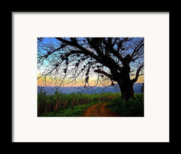 The Road Less Traveled Framed Print featuring the photograph The Road Less Traveled by Skip Hunt