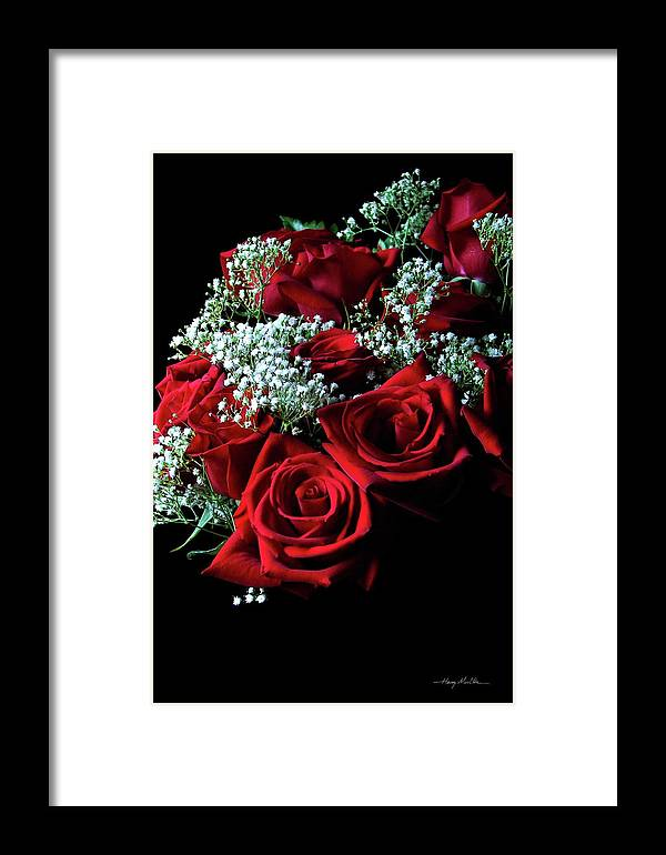 Roses Framed Print featuring the photograph The Rose by Harry Moulton