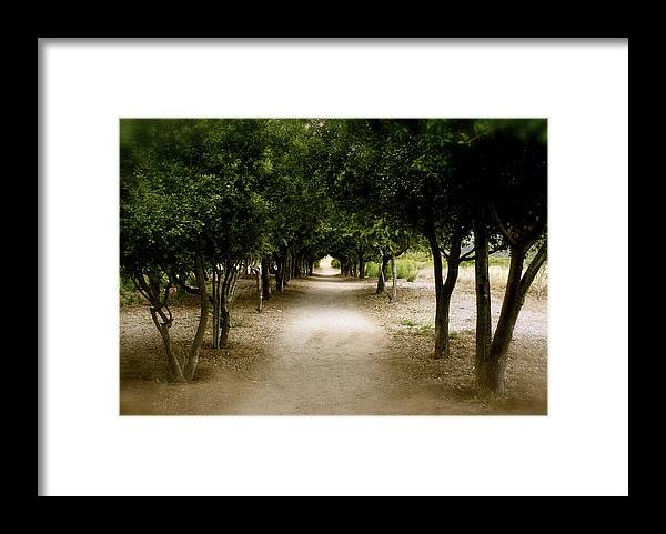 Landscape Framed Print featuring the photograph The Trail Escapes by Ron Morales
