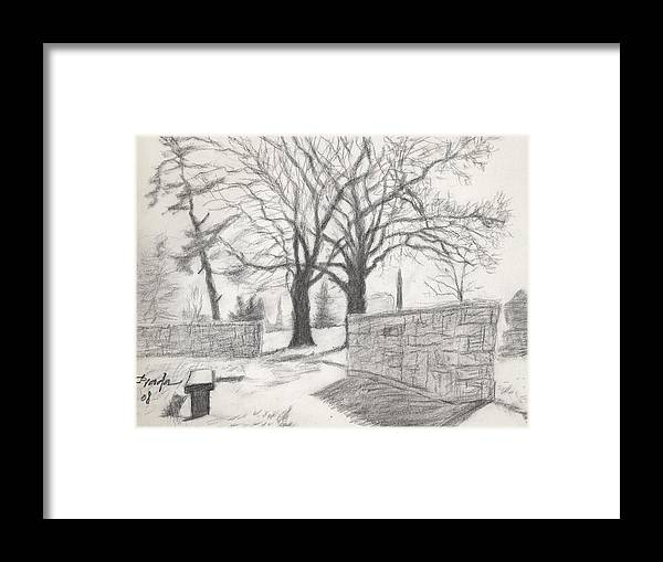 Charcoal Framed Print featuring the drawing The Tree Of Life by Horacio Prada