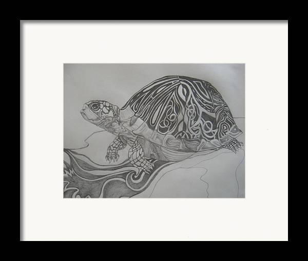 Water Framed Print featuring the drawing The Turtle by Theodora Dimitrijevic