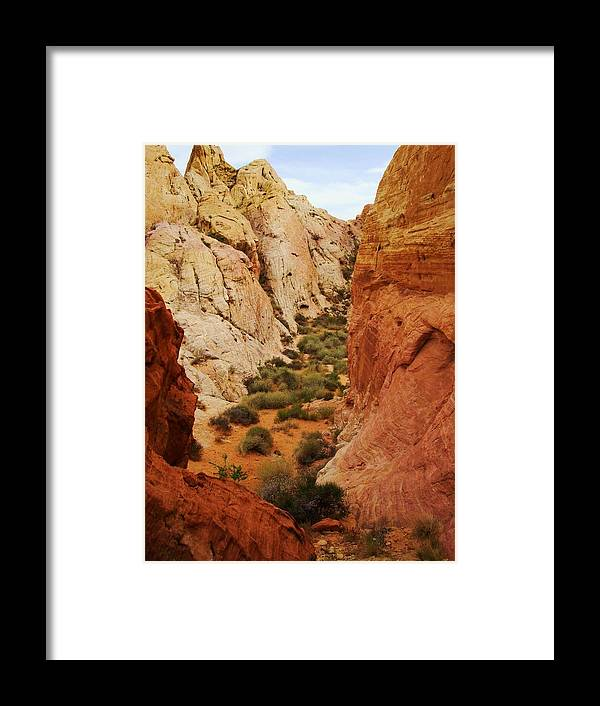 Rocks Framed Print featuring the photograph The Valley Of Fire 126 by Steve Ponting