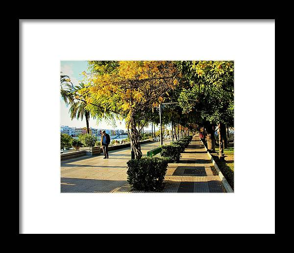 Framed Print featuring the photograph The Walk by Yulia Solovyova