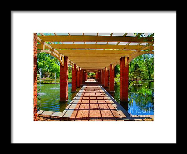 Restful Framed Print featuring the photograph The Walkway by Judy Waller