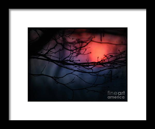 Sunset Framed Print featuring the photograph The Warm Light by Angel Ciesniarska