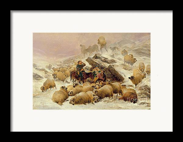 Sheep Framed Print featuring the painting The Warmth Of A Wee Dram by TS Cooper