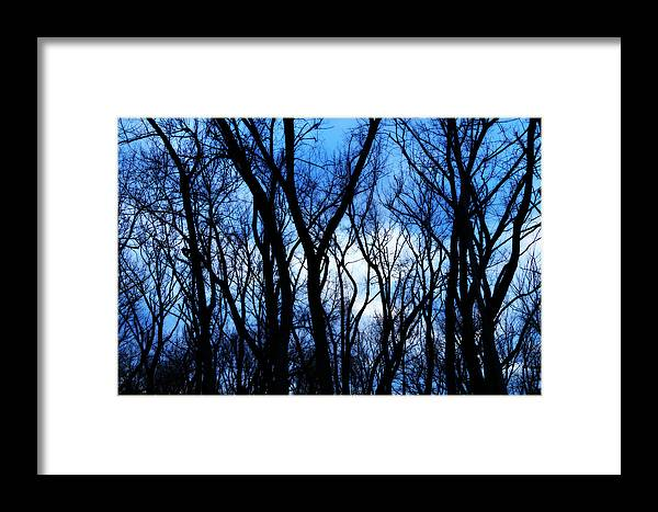 Winter Framed Print featuring the photograph The Warriors Of Winter by Rahdne Zola