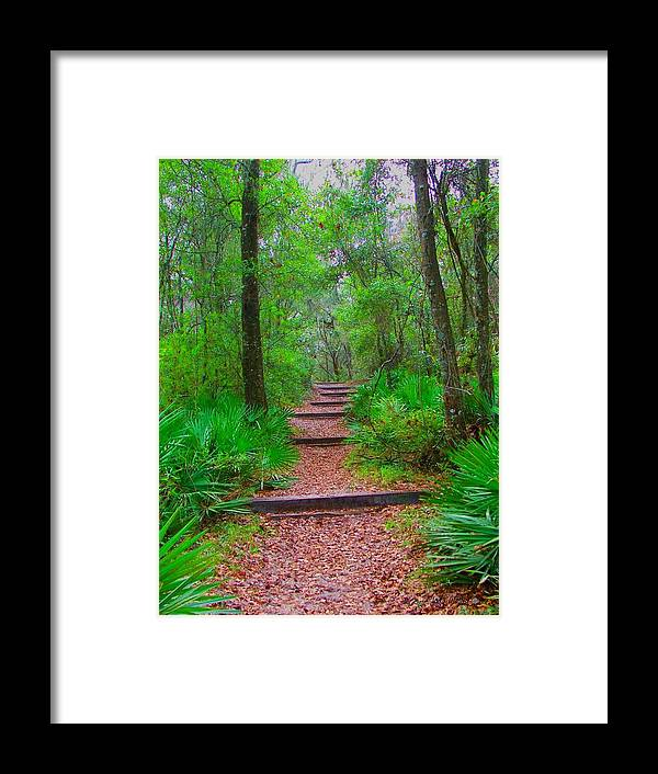 Green Framed Print featuring the photograph The Way Up by Judy Waller
