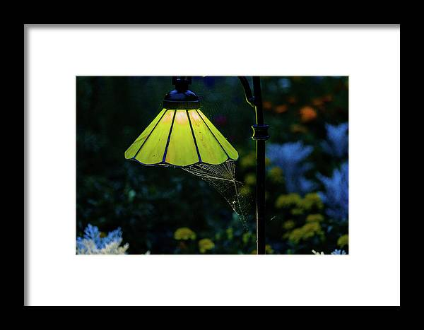 Light Framed Print featuring the photograph The Web by John Gagnon