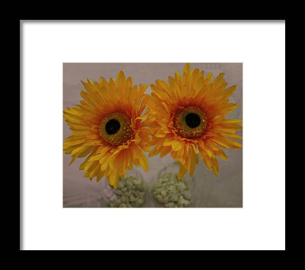Photography Framed Print featuring the photograph These Eyes by Bill Ades