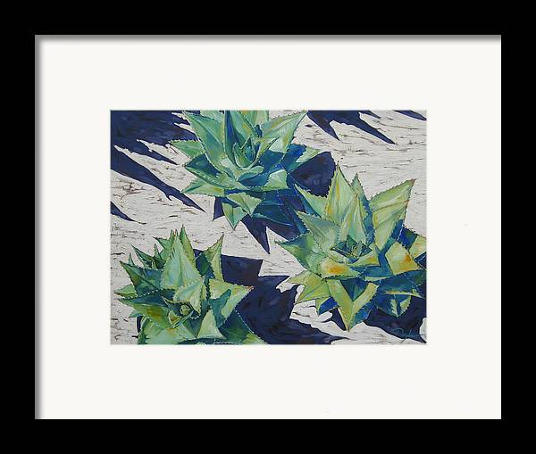 Botanical Framed Print featuring the painting Three Aloe by Karen Doyle