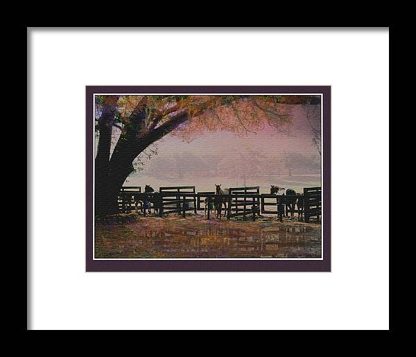 Brood Mares:horses:farm Landscapes Framed Print featuring the digital art Three And Three In Three Paddocks by John Breen