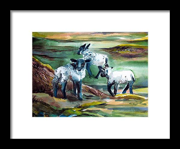 Lambs Framed Print featuring the painting Three Lambs by Mindy Newman