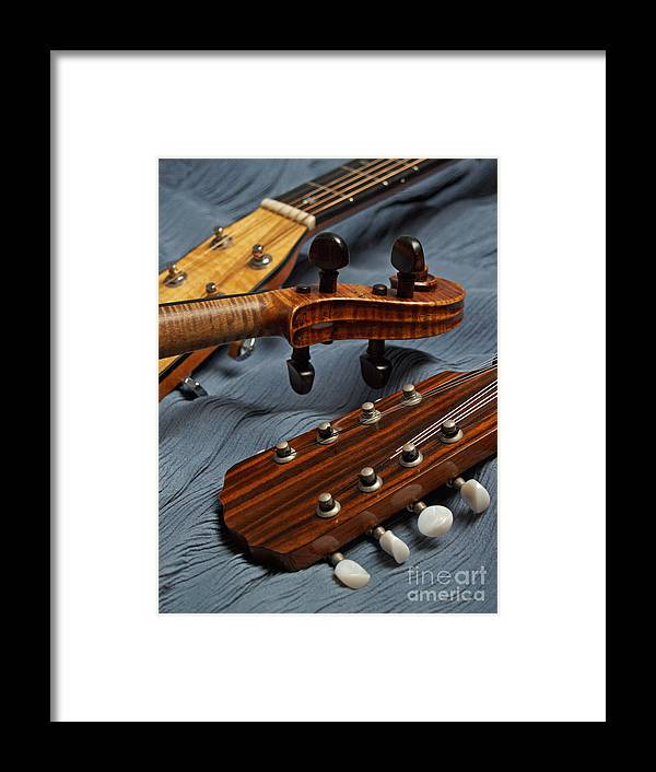 Guitar Framed Print featuring the photograph Three Musical Instrument Heads On Blue by Anna Lisa Yoder