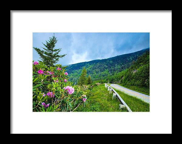 Blue Ridge Parkway Framed Print featuring the photograph Through The Blue Ridges by Dana Foreman