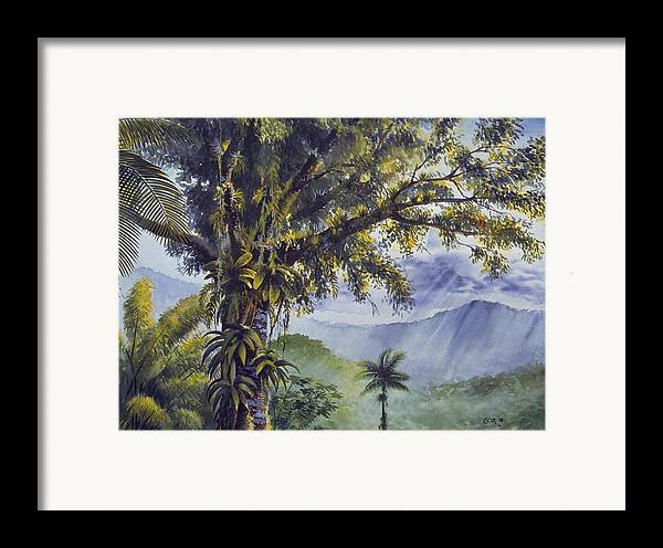 Chris Cox Framed Print featuring the painting Through The Canopy by Christopher Cox