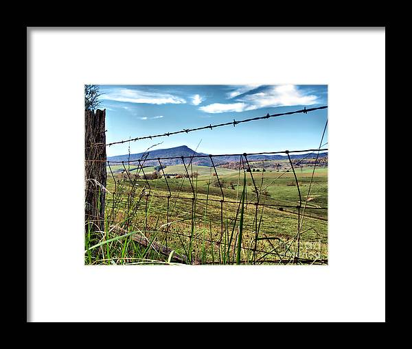 Framed Print featuring the photograph Through The Fence by Kathy Jennings