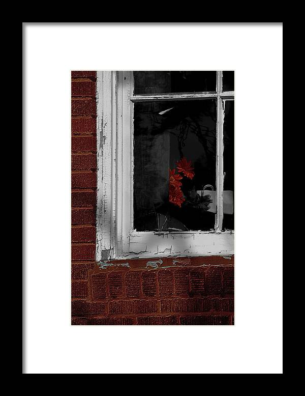 Glass Framed Print featuring the photograph Through The Looking Glass by The Stone Age