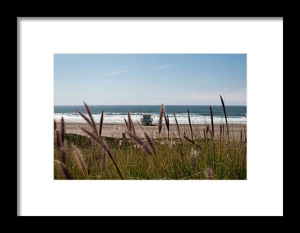 The Strand Framed Print featuring the photograph Through The Reeds by Lorraine Devon Wilke