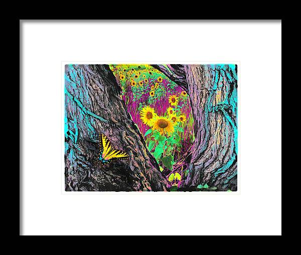 Butterfly Posters Framed Print featuring the photograph Through The Trees by Gina Signore