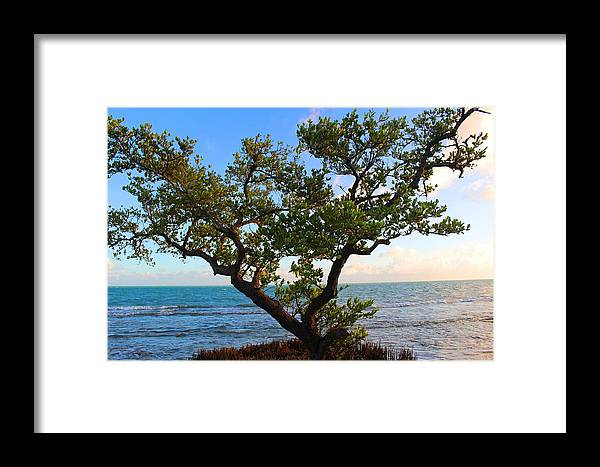 Ocean Framed Print featuring the photograph Tide Coming In by Joe Arwood